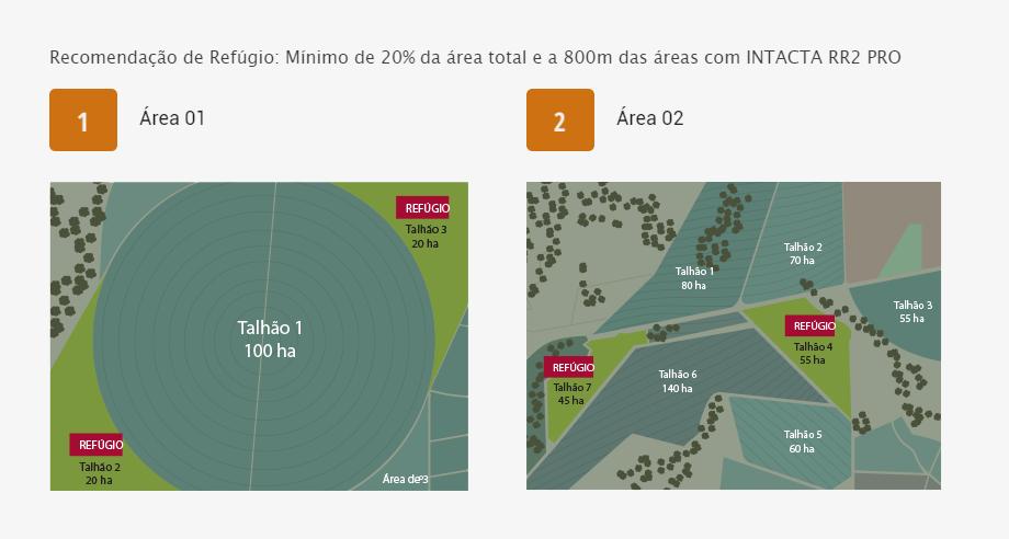 exemplo-areas-1-2