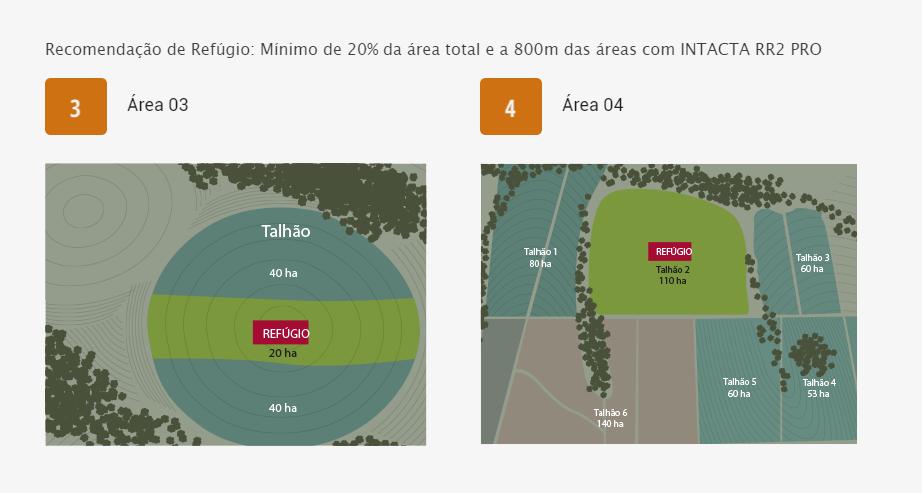 exemplo-areas-3-4